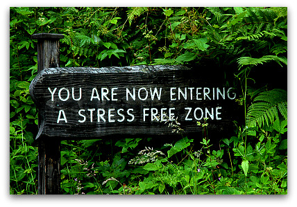 25 Encouraging Bible Verses for Stress | Lynn Dove's Journey Thoughts