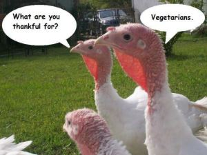 Funny-Thanksgiving-Vegetarian-Way-2