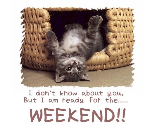 weekend_comment_graphic_07