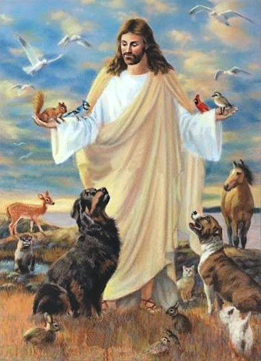 25 Encouraging Bible Verses for the Loss of a Pet | Lynn ...